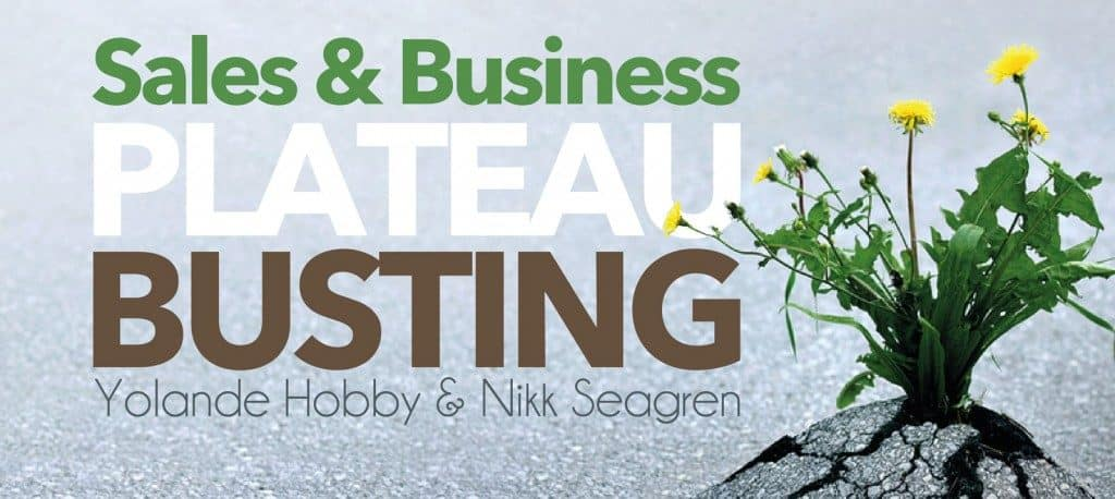 Sales Training & Plateau Busting